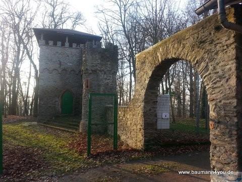 Kippenburg - 1