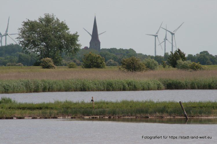 Wasservogelreservat Wallnau / Insel Fehmarn